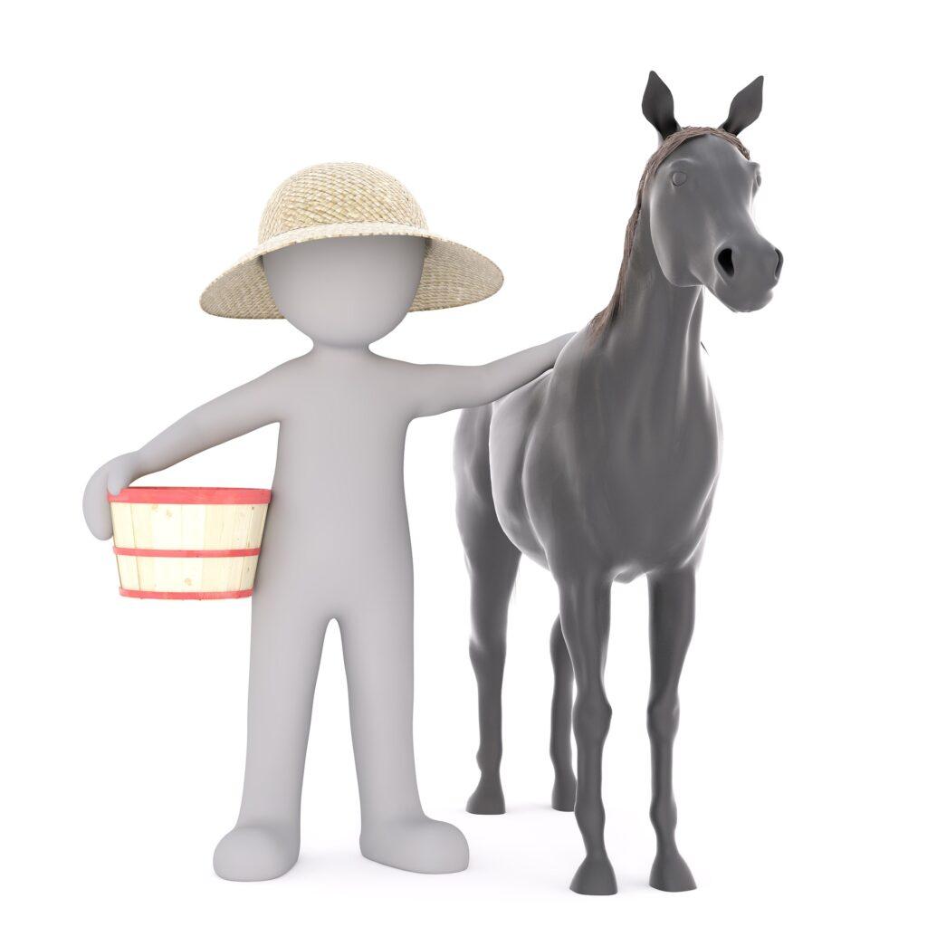 Huisdieren en paarden in Zoetermeer